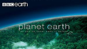 Planet Earth Netflix